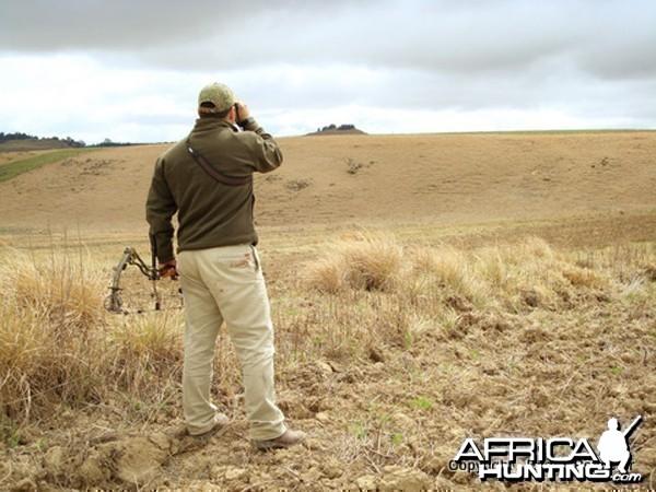 Scanning Distant Hillsides
