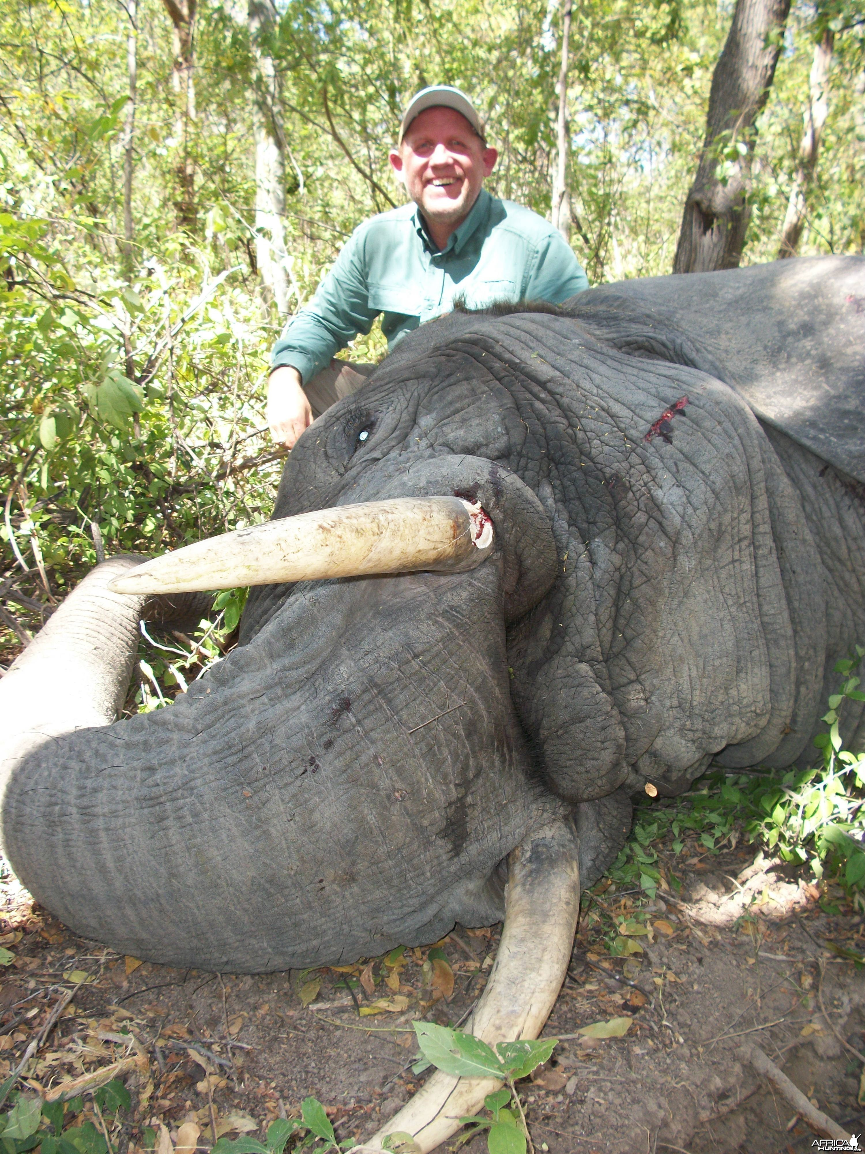 Hunting Elephant in Mozambique
