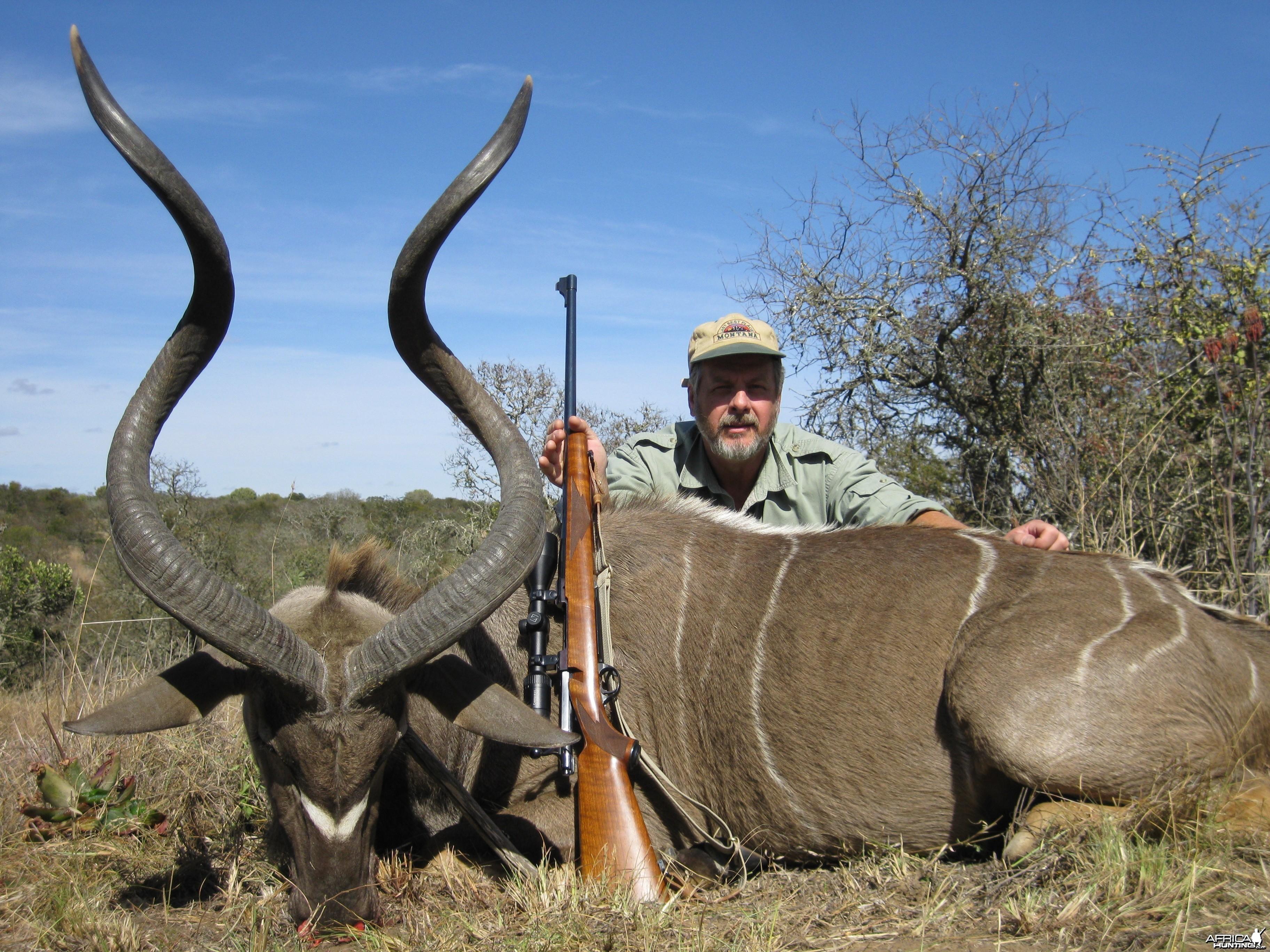 Limpopo kudu