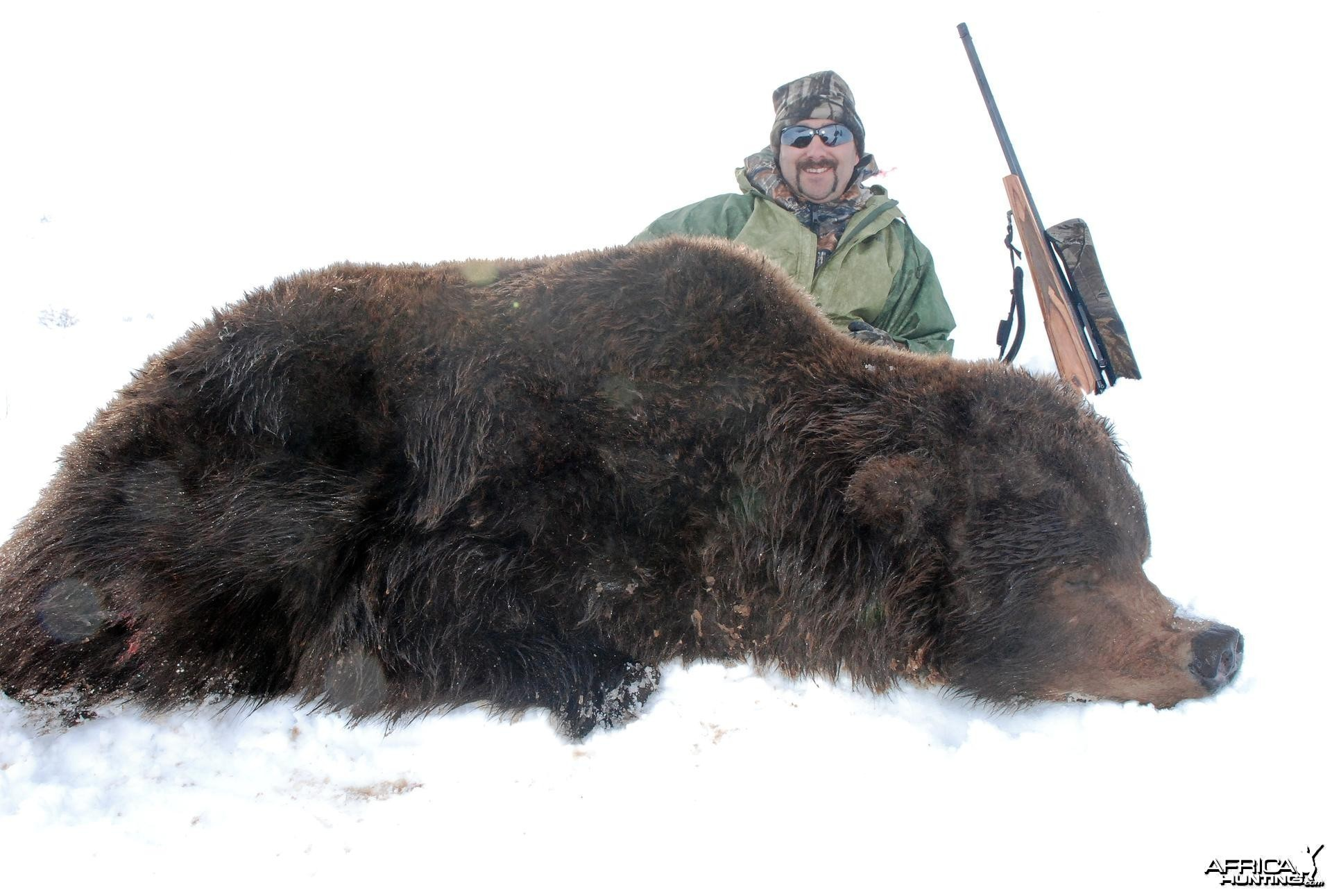 Alaska Brown Bear Hunt