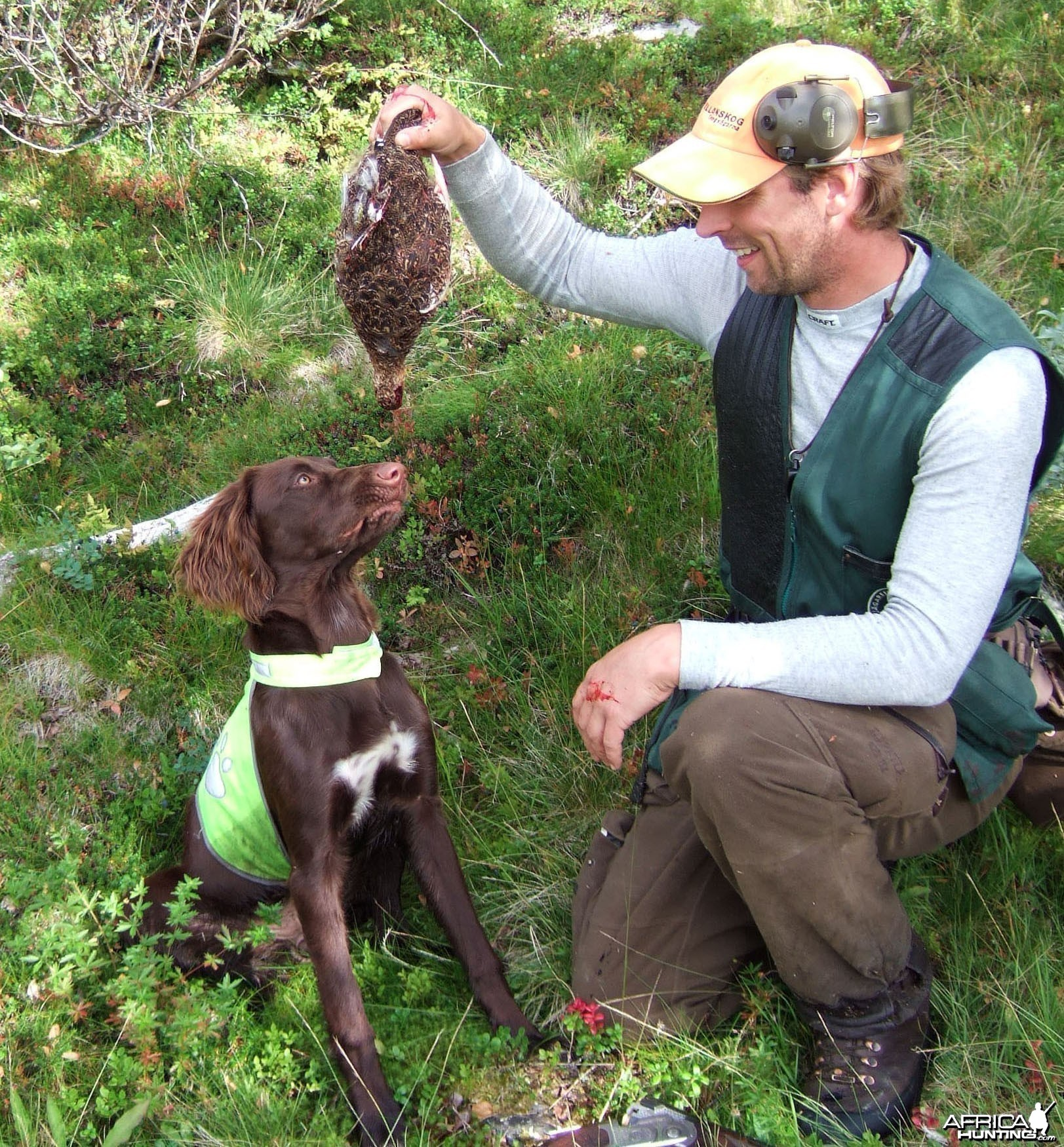 Grouse Hunting in Sweden