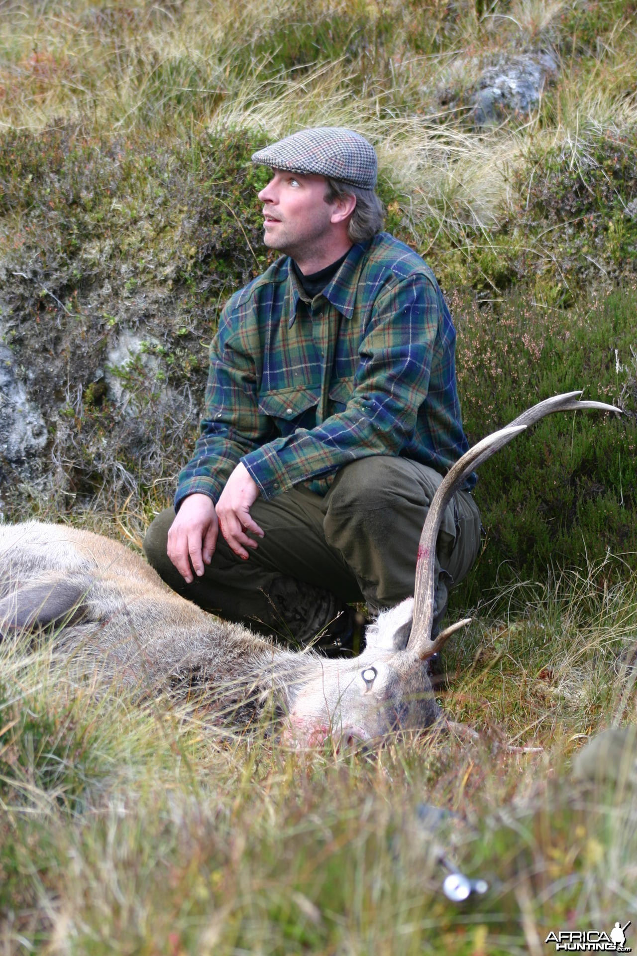 Hunting Red Stag in Scotland