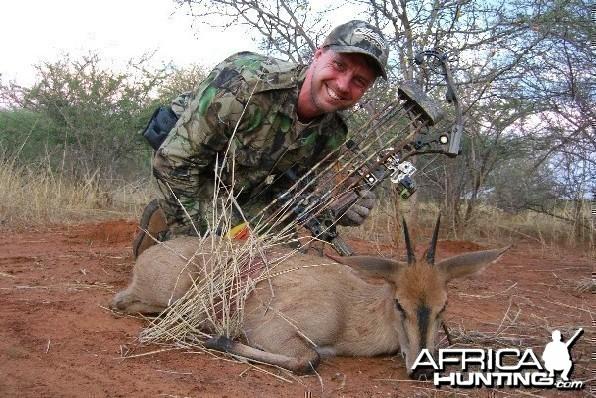 Bowhunting Duiker Namibia