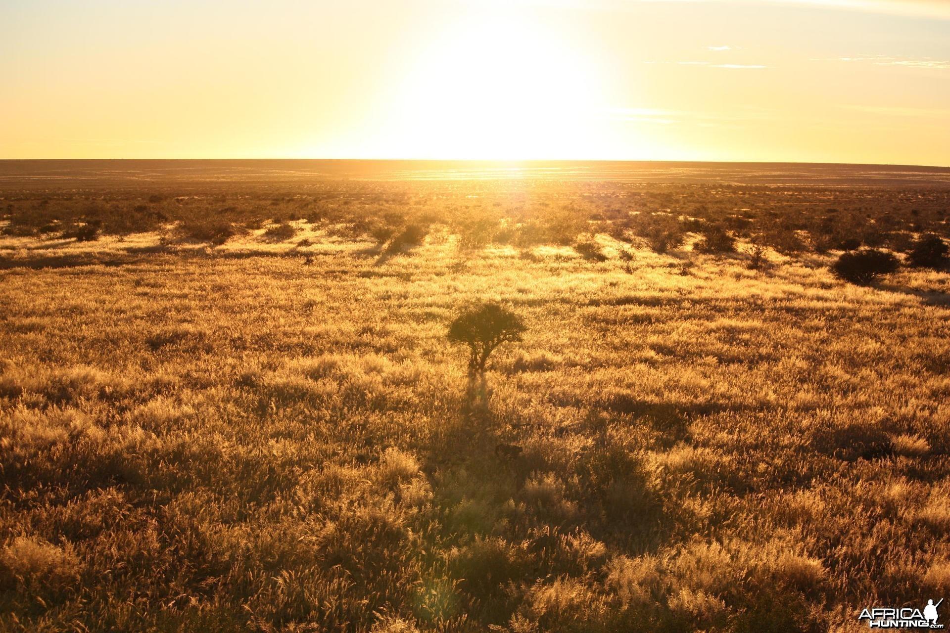 African Sunrises, here at the edge of the Kalahari - always beautiful