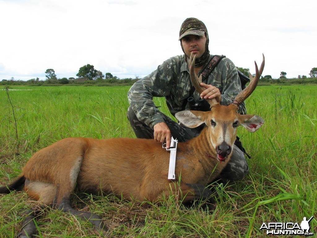 Hunting Swamp Deer