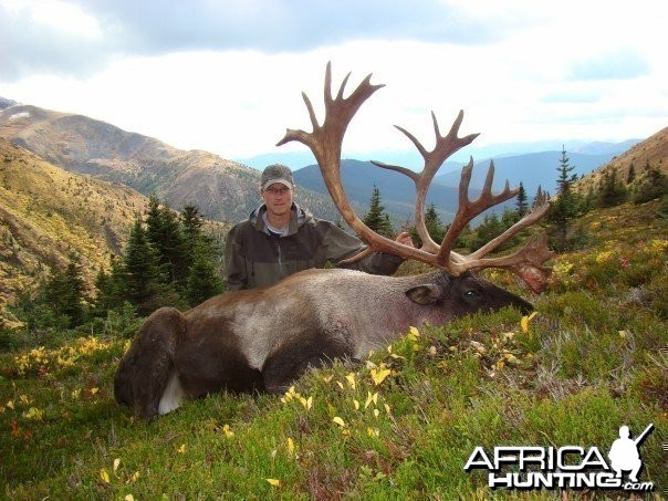 B and C Mountain Caribou Hunt