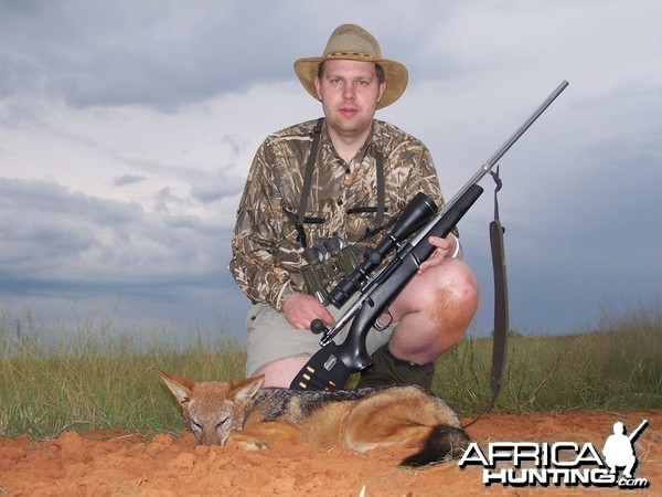 Hunting Jackal Kimberley South Africa