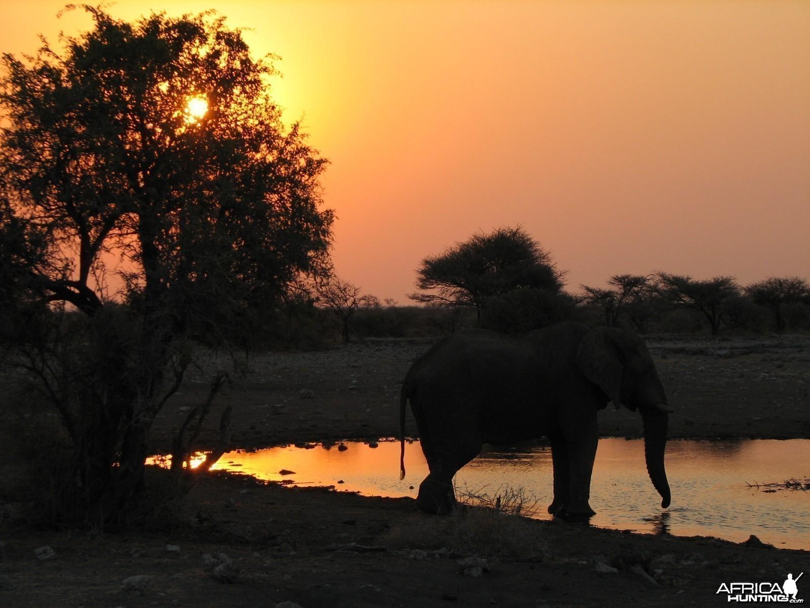 Sunset Etosha Namibia