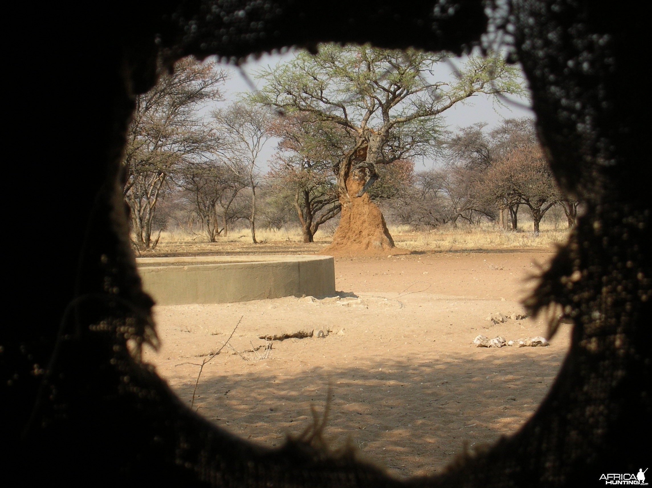 Bow Hunting Blind Namibia