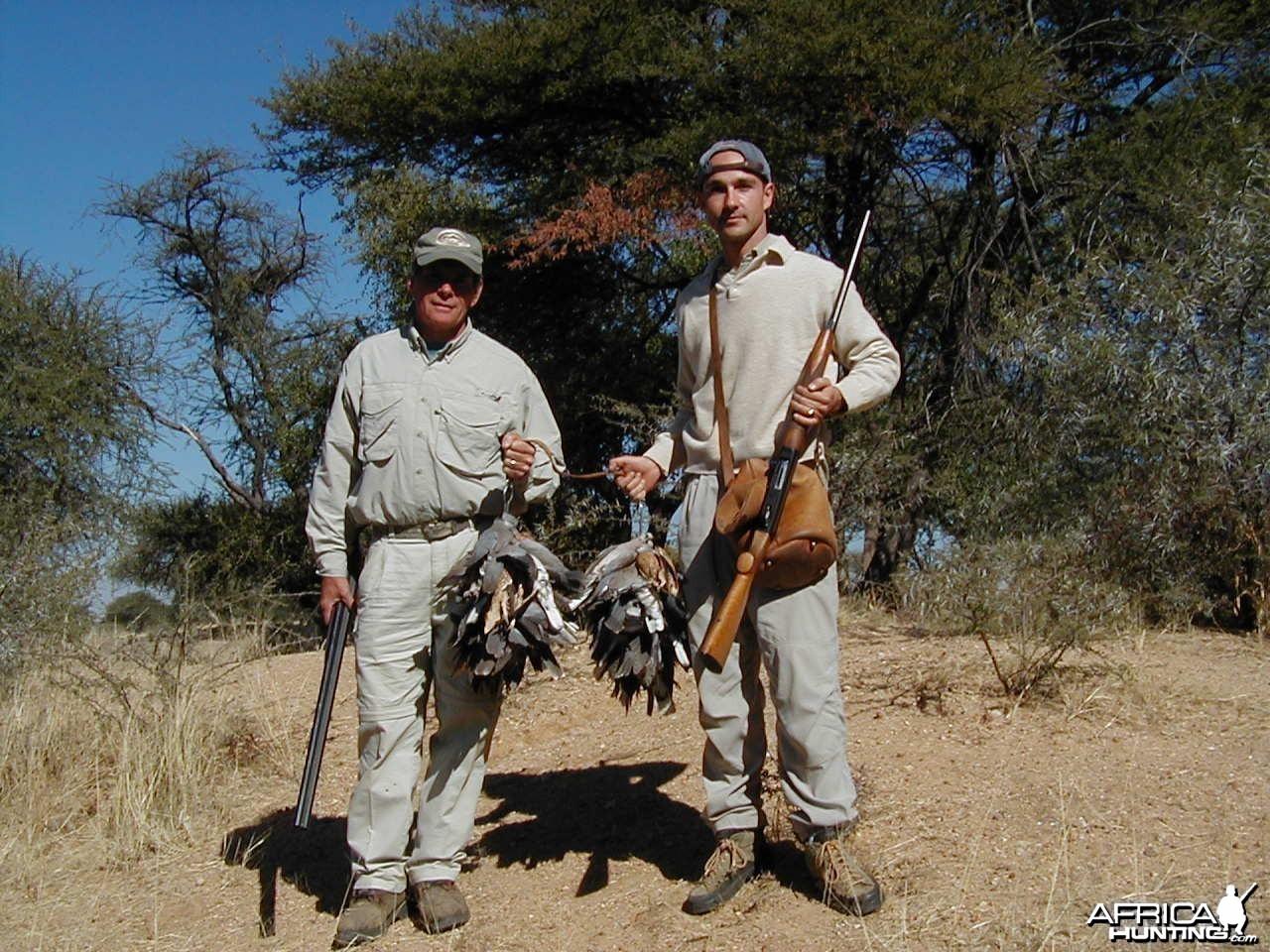 Bird Hunting Namibia Africa