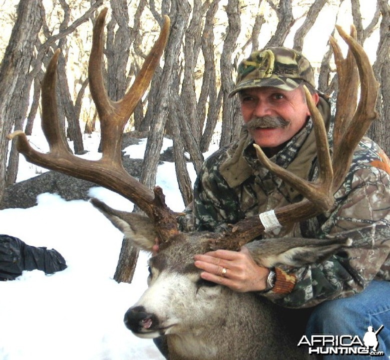Hunting Mule Deer Buck