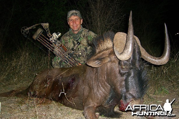 Bowhunting Black Wildebeest