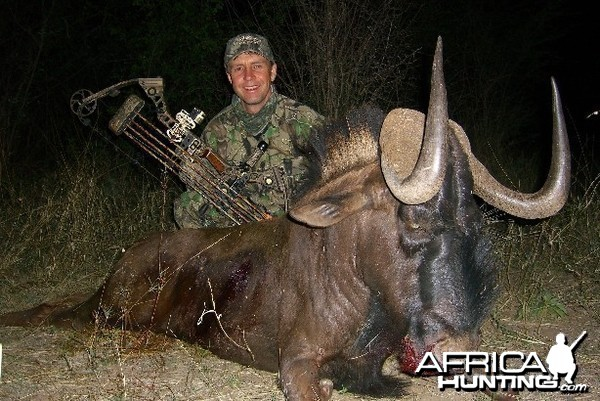 Bowhunting Black Wildebeest