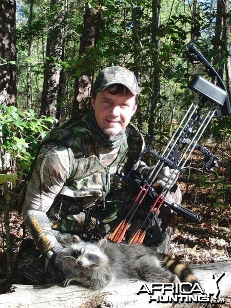 Bowhunting Racoon
