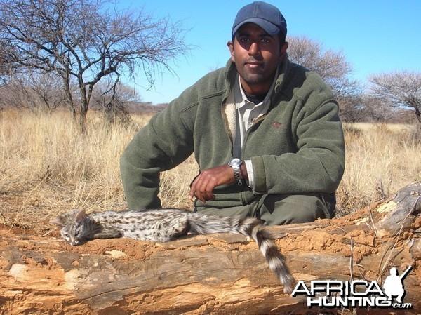 Hunting Genet in Namibia