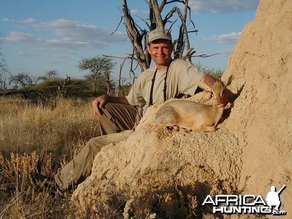Hunting Damara Dik-Dik in Namibia