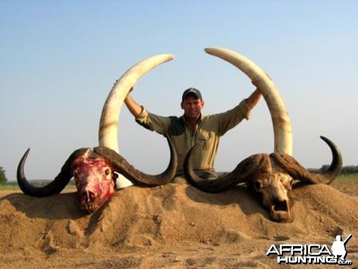 Hunting Buffalo and Elephant with Pelandaba Safaris in Zimbabwe