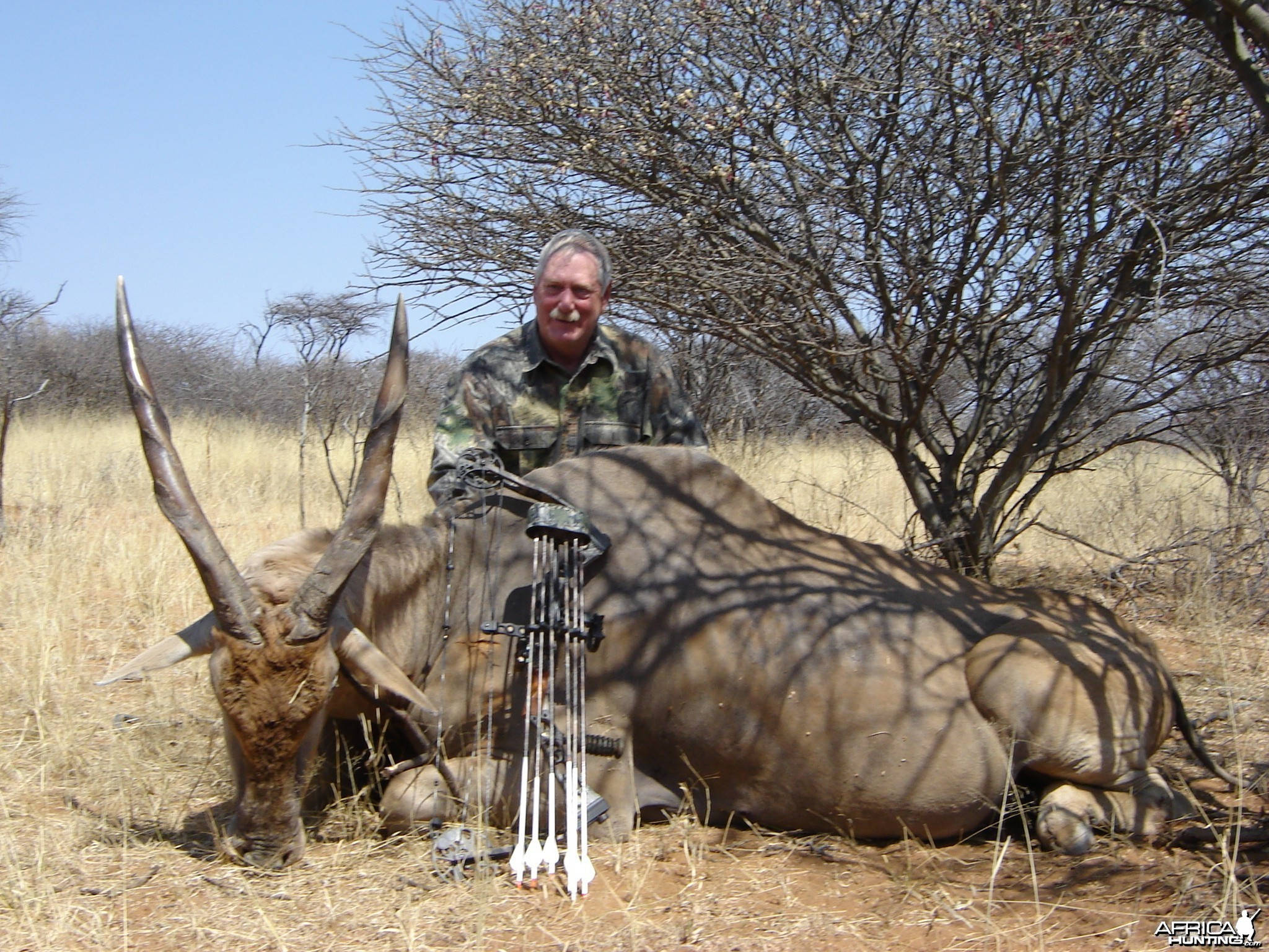Bowhunting Cape Eland in Namibia