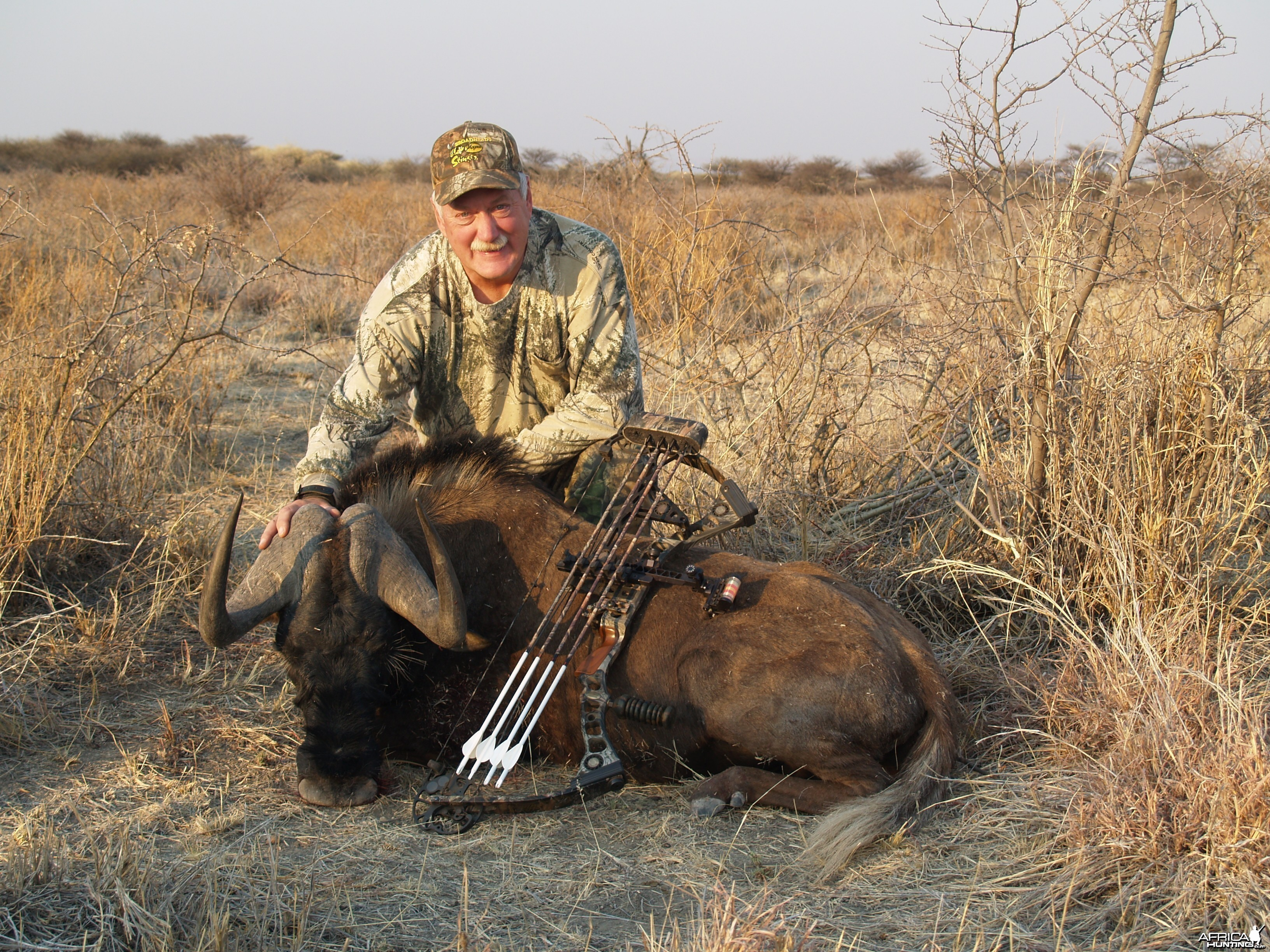 Bowhunting Black Wildebeest in Namibia