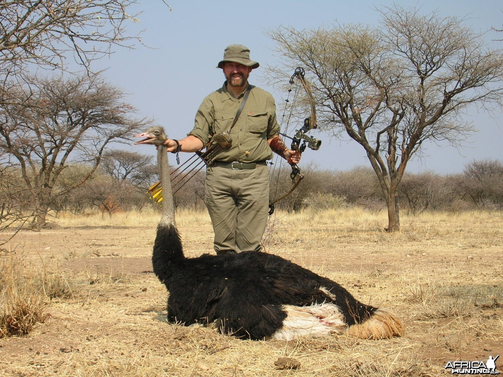 Bowhunting Ostrich in Namibia