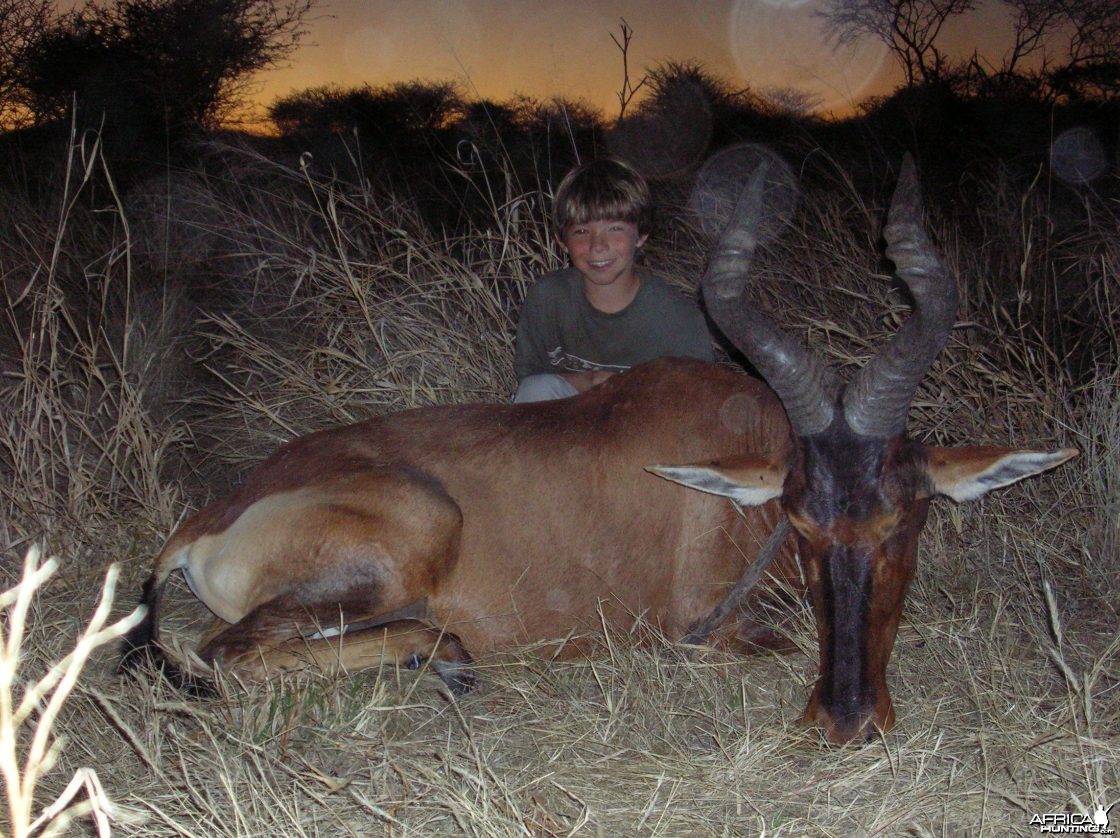 Hunting Red Hartebeest in Namibia