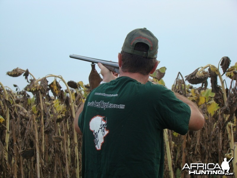 Bird Hunting South Africa