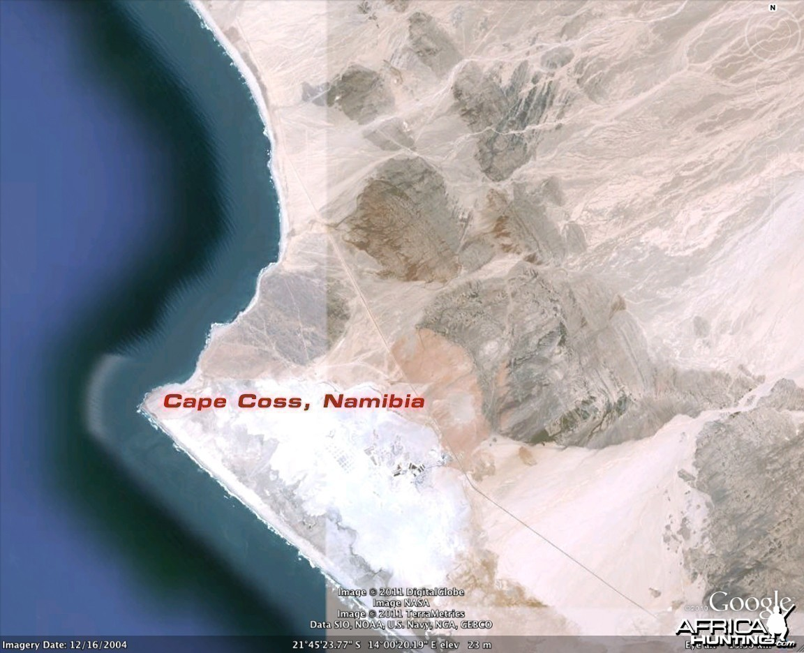 Google Earth Satellite Imagery of Cape Cross in Namibia