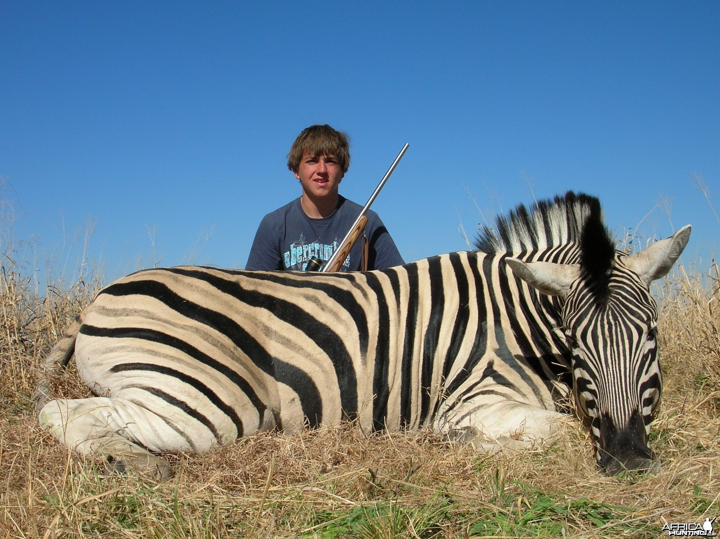 Hunting Burchell's Plain Zebra in Namibia