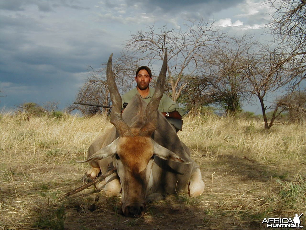 Hunting Cape Eland in Namibia