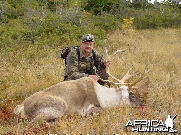 Hunting caribou