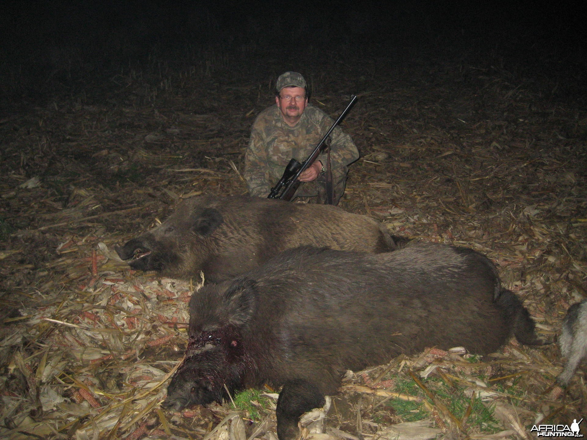 Hunting Wild Boars