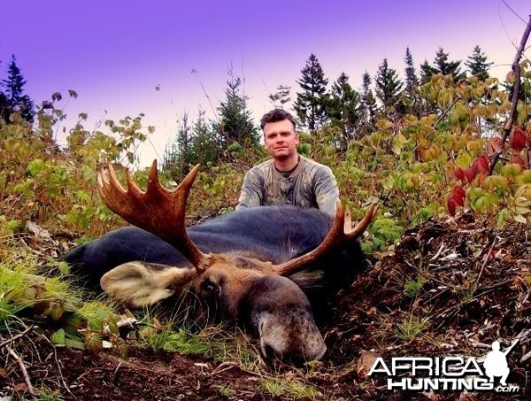 Hunting Moose Vermont