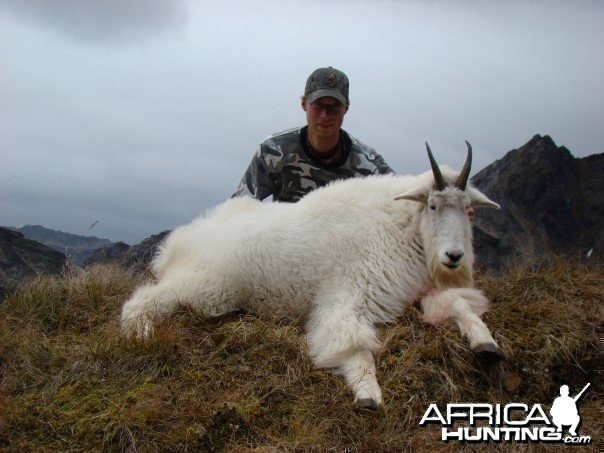 Hunting high alpine mountain goat