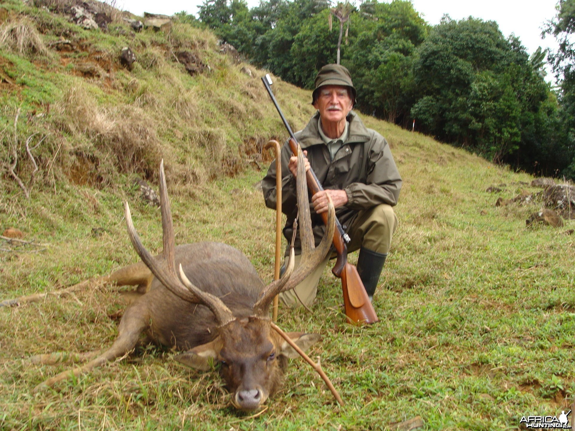 Hunting Rusa Deer Mauritius