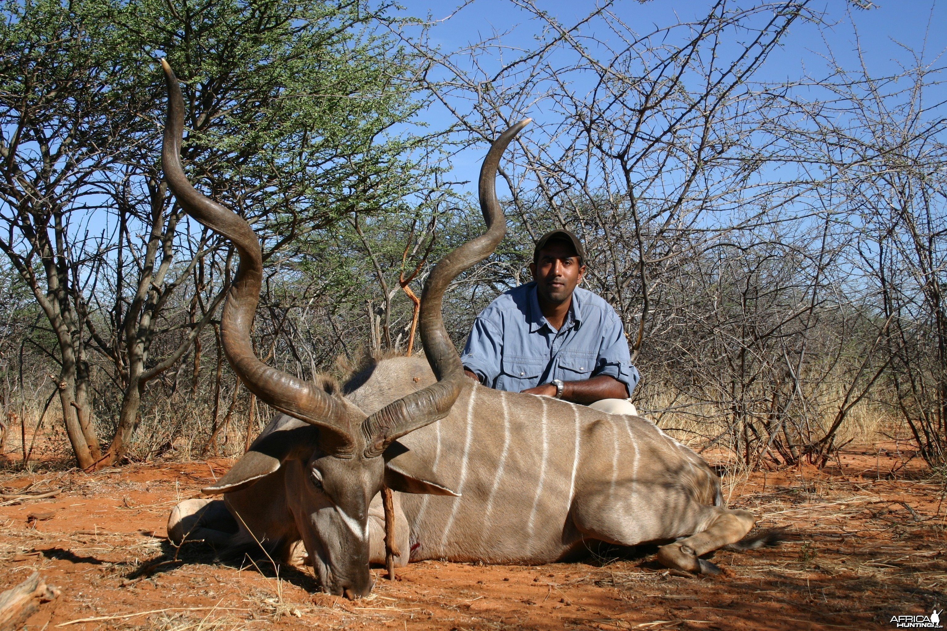 Hunting Greater Kudu in Namibia