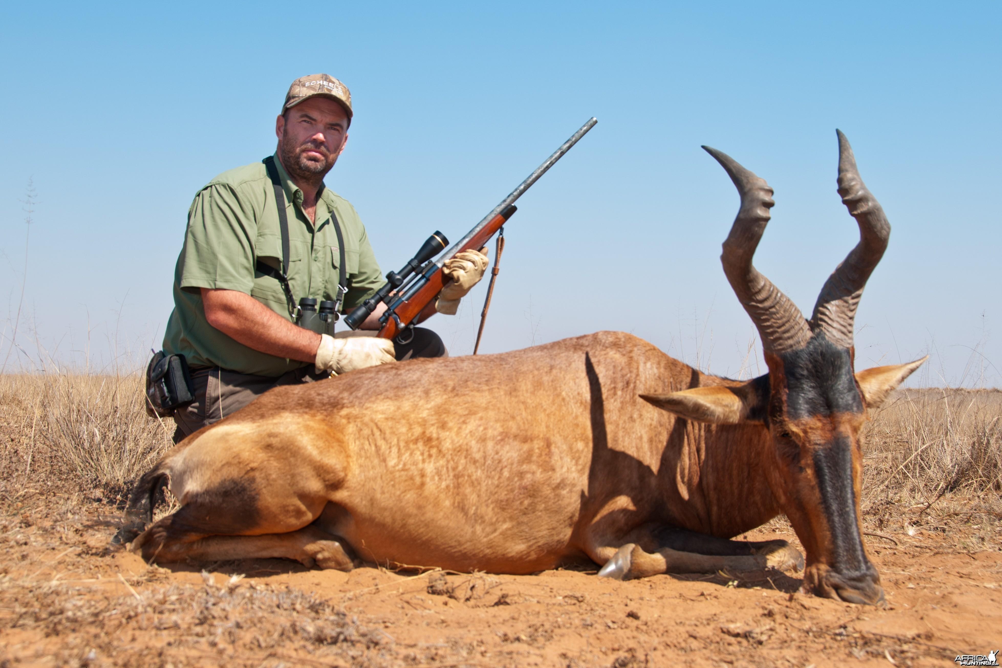 Hunting Hartebeest 2010 RSA