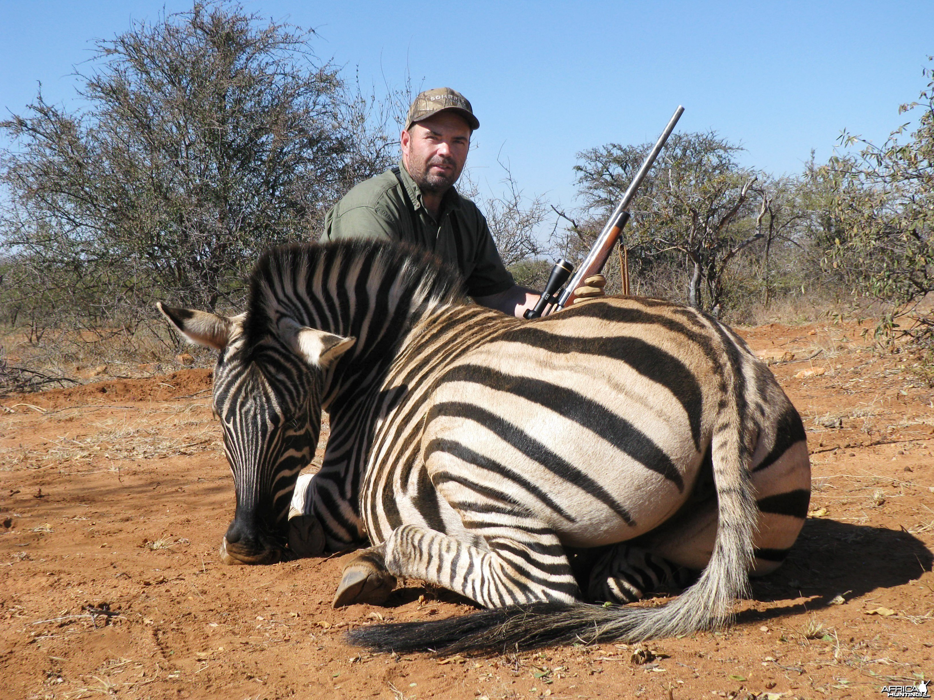 Hunting Zebra 2010 RSA