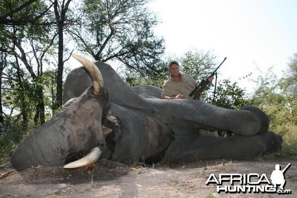 Hunting Elephant Namibia