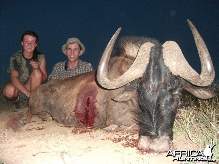 Mattias culling Black wildebeest