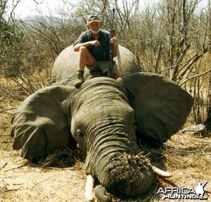 Hunting Elephant Zimbabwe