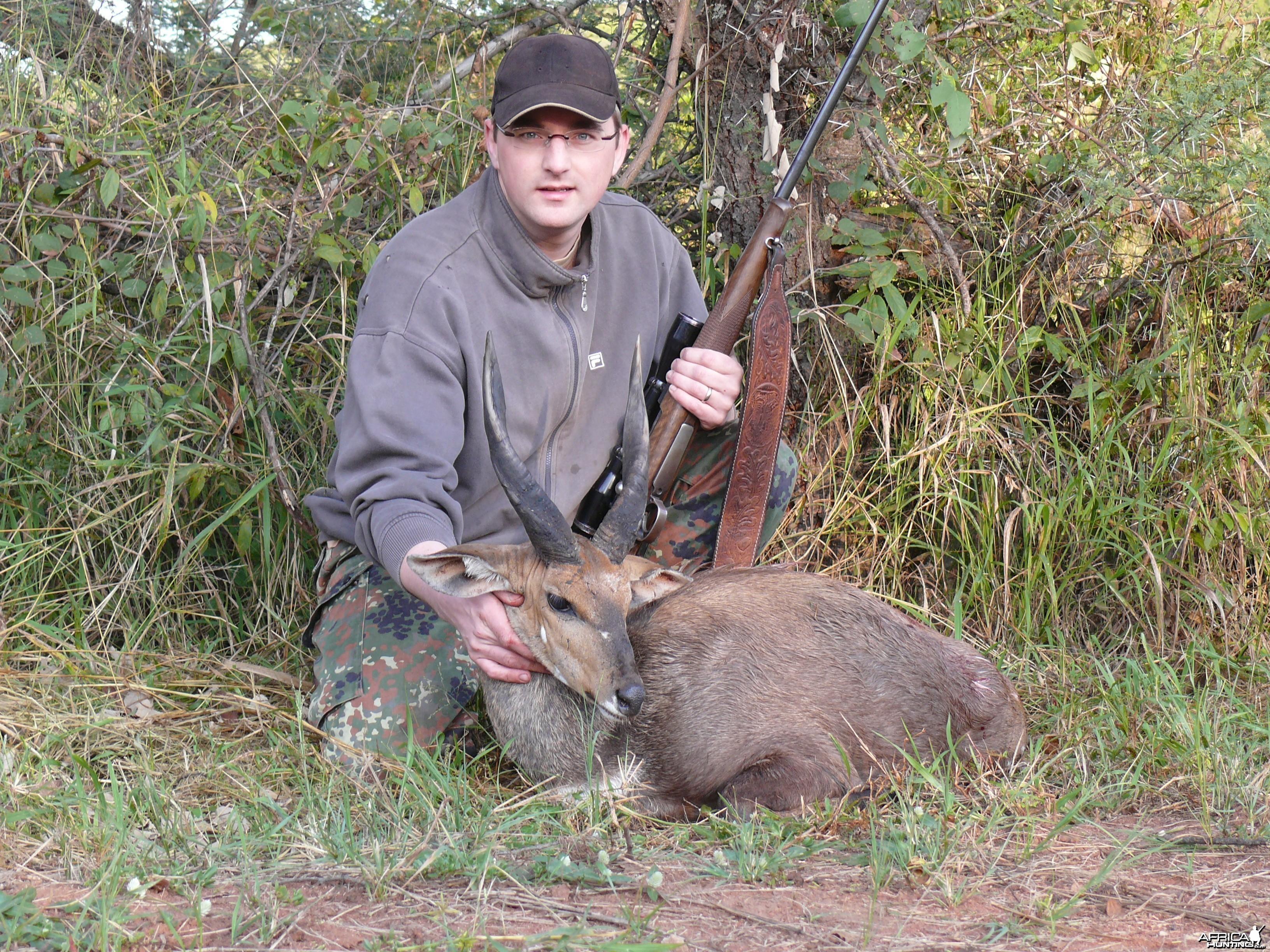 Bushbuck, RSA 2009