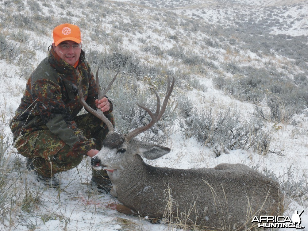 Hunting Muledeer, Wyoming 2009