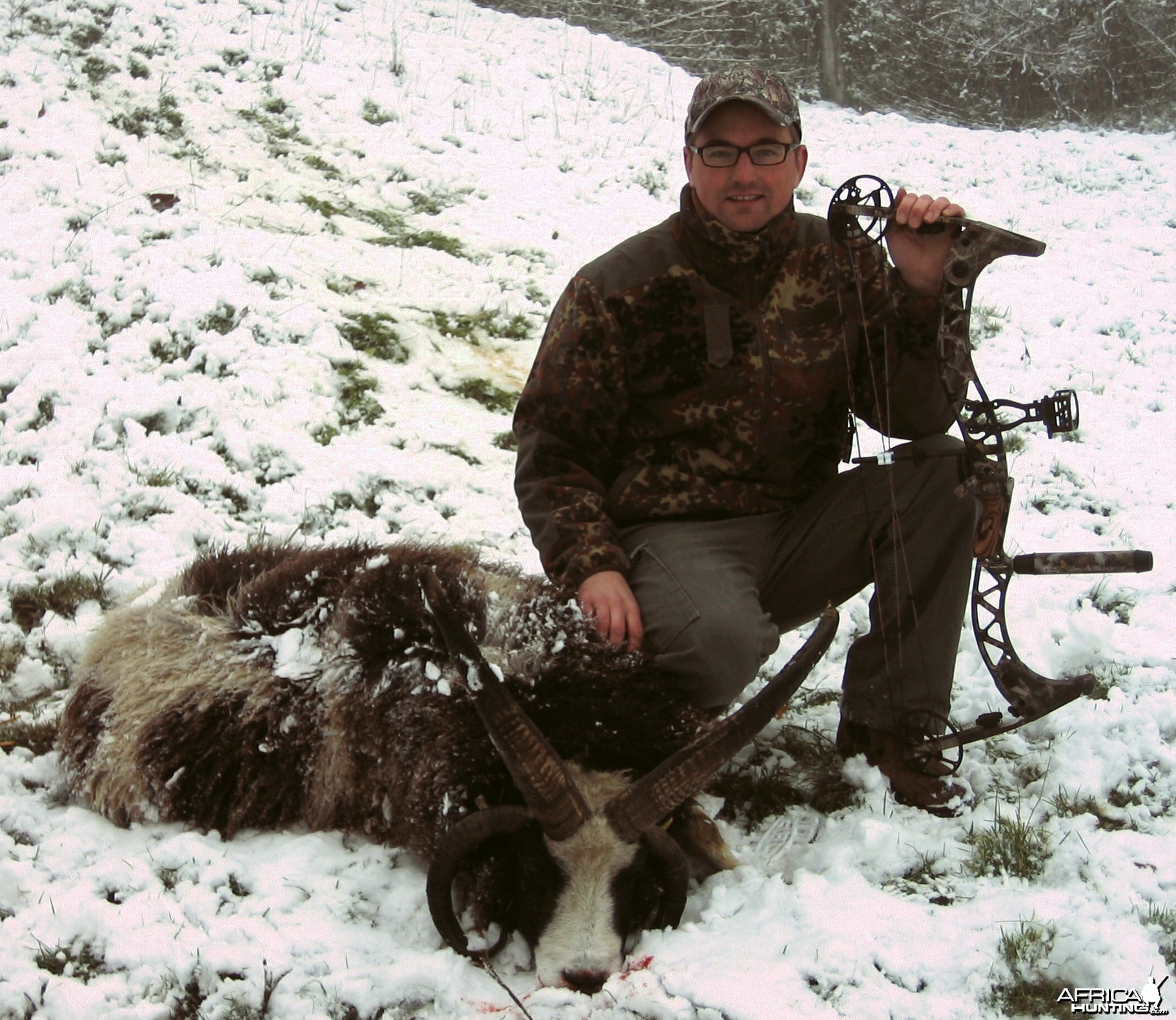Bowhunting Four-horned sheep, 2010