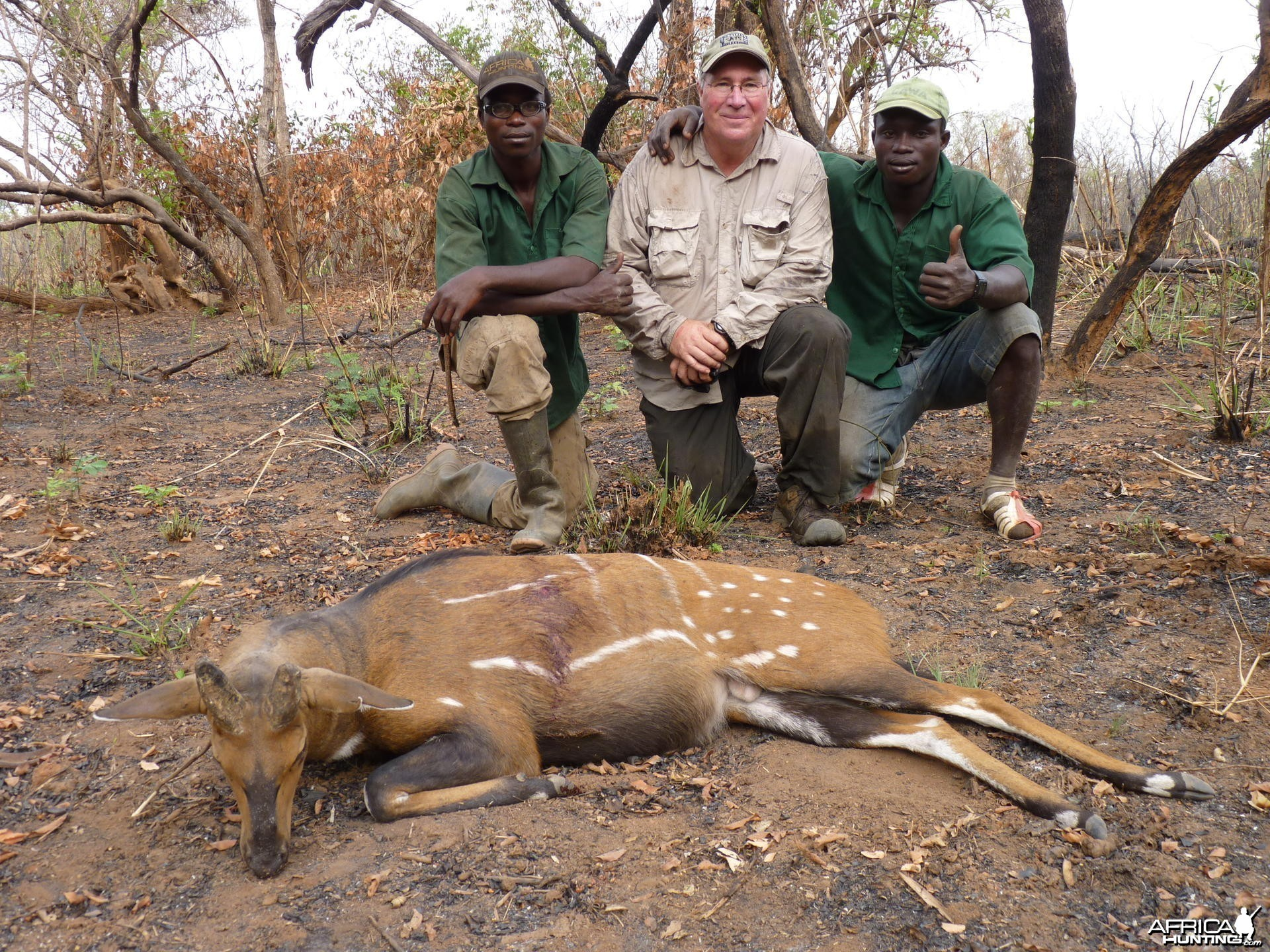 The oldest bushbuck I have ever seen!