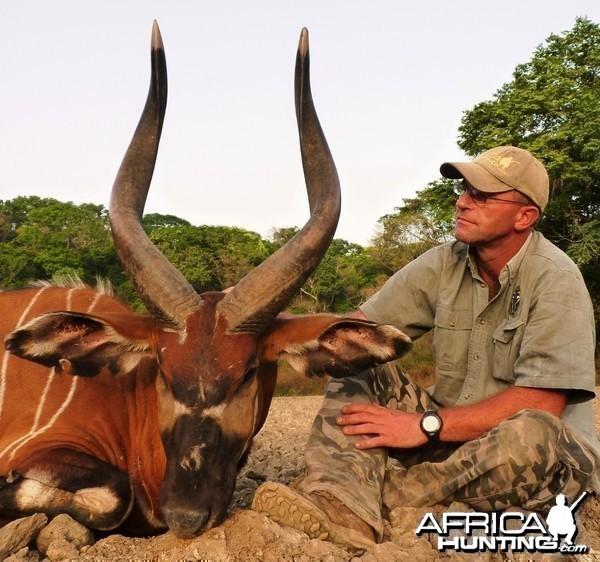 33 5/8 inch Bongo hunted in CAR
