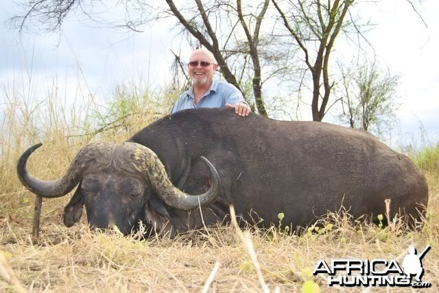42 inch Buffalo hunted in Zimbabwe with Pelandaba Safaris