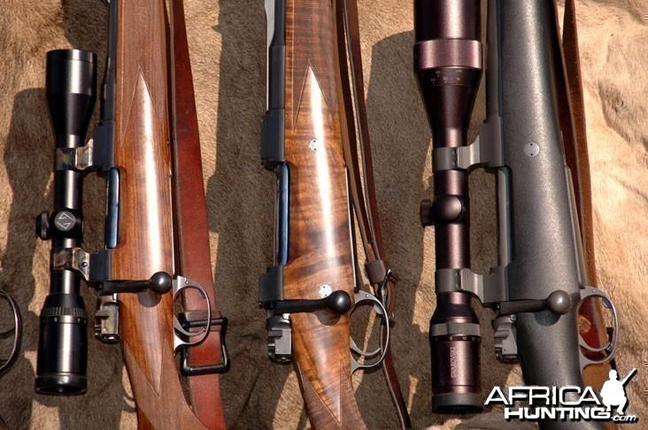 Big Bore Rifles