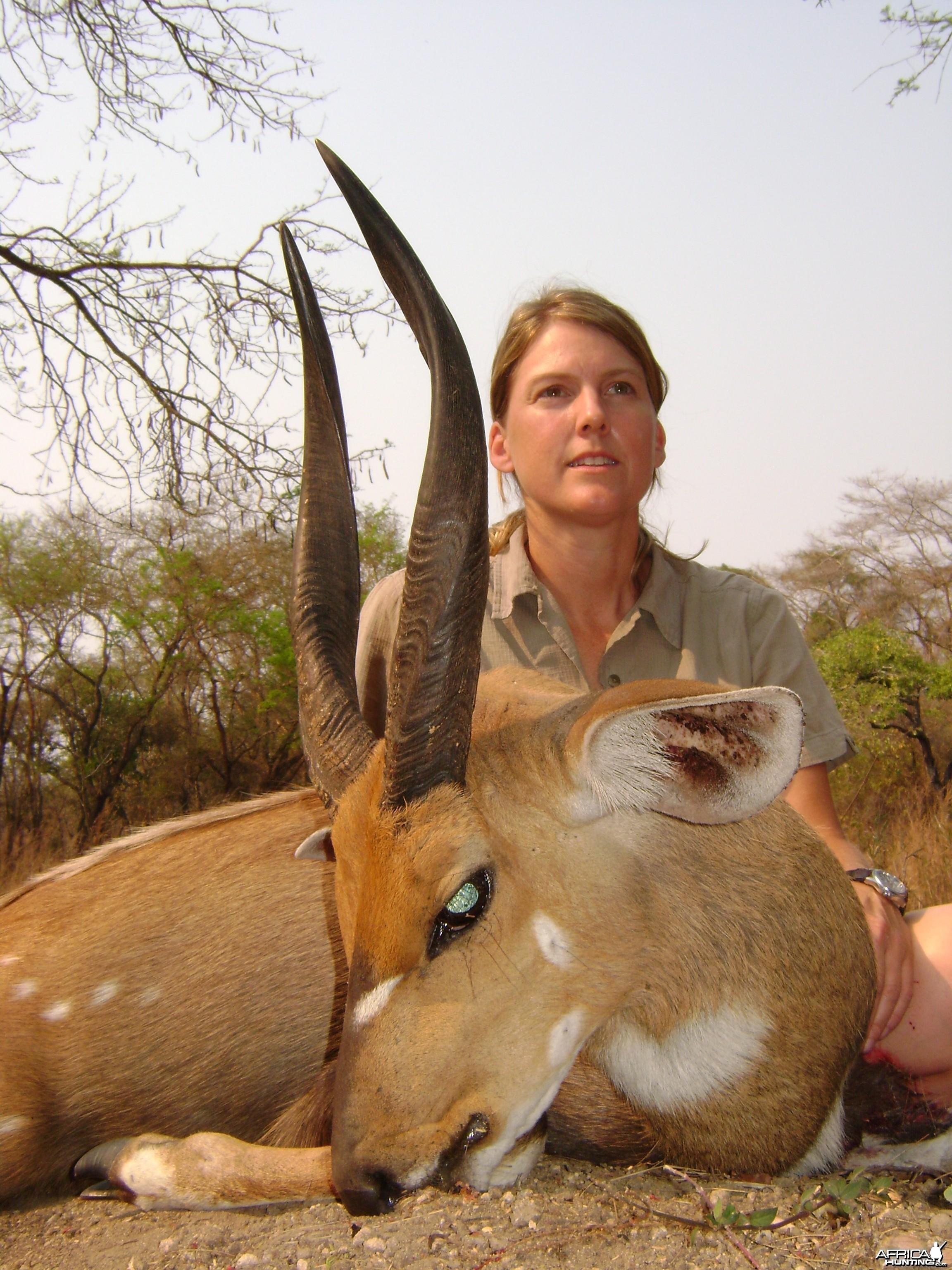 Client bushbuck Mozambique