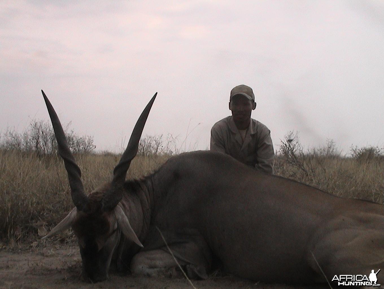 Botswana eland