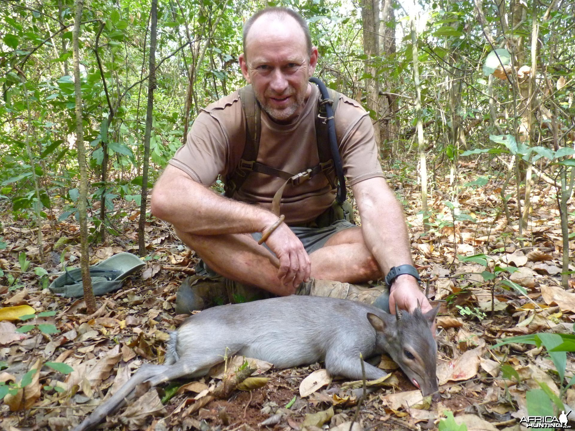 Blue Duiker hunt in CAR